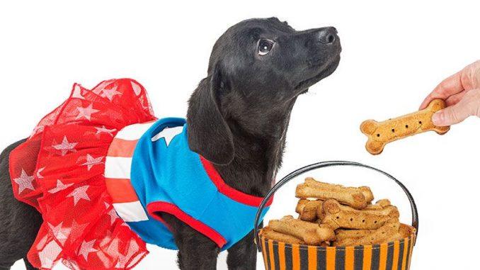 Healthy Dog Treats - Commercial and Homemade Treats